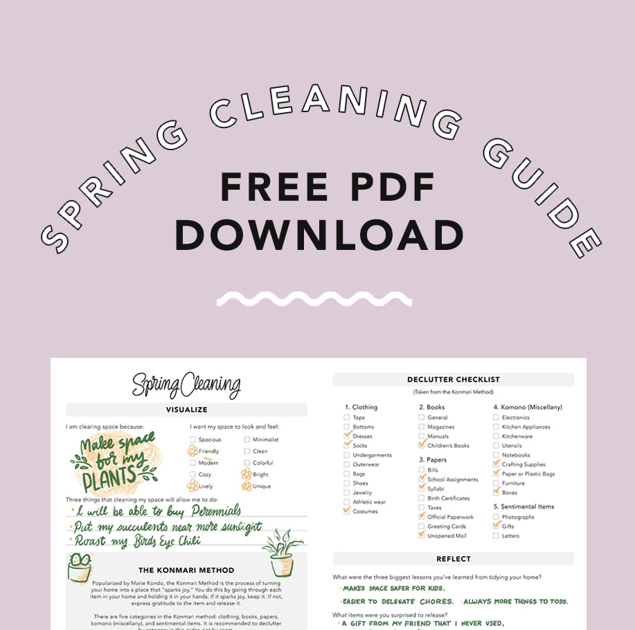 Spring Cleaning Download